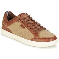 Παπούτσια Άνδρας Χαμηλά Sneakers Kickers AART HEMP Brown / Beige