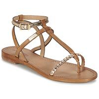 Παπούτσια Γυναίκα Σανδάλια / Πέδιλα Les Tropéziennes par M Belarbi HILATRES Brown / Gold