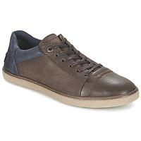 Παπούτσια Άνδρας Χαμηλά Sneakers Kickers CALIC Brown / Fonce