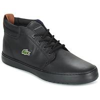 Παπούτσια Άνδρας Ψηλά Sneakers Lacoste AMPTHILL TERRA Black