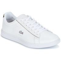 Παπούτσια Γυναίκα Χαμηλά Sneakers Lacoste CARNABY EVO άσπρο