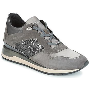 Παπούτσια Γυναίκα Χαμηλά Sneakers Geox D SHAHIRA Grey