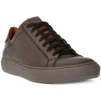 Παπούτσια Άνδρας Χαμηλά Sneakers Lion WEST 311 Marrone