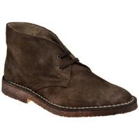 Παπούτσια Άνδρας Μπότες Koloski  Brown
