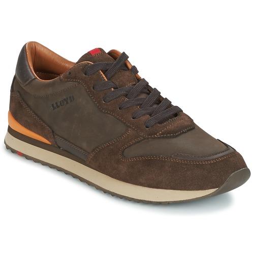 Παπούτσια Άνδρας Χαμηλά Sneakers Lloyd EDWIN Brown