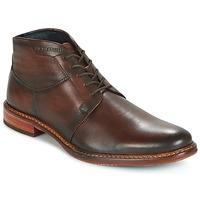 Παπούτσια Άνδρας Μπότες Daniel Hechter STIVA Brown / Fonce