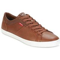 Παπούτσια Άνδρας Χαμηλά Sneakers Levi's WOODS Brown
