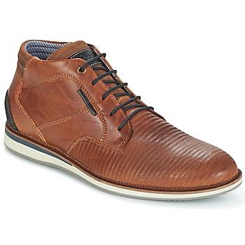 Παπούτσια Άνδρας Μπότες Bullboxer FILAT Cognac