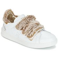 Παπούτσια Γυναίκα Χαμηλά Sneakers Ippon Vintage FLIGHT POLAR Άσπρο / Cuivré