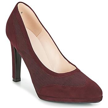 Παπούτσια Γυναίκα Γόβες Peter Kaiser HERNA Bordeaux