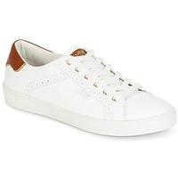 Παπούτσια Γυναίκα Χαμηλά Sneakers Molly Bracken MALIO άσπρο