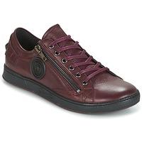 Παπούτσια Γυναίκα Χαμηλά Sneakers Pataugas JESTER Bordeaux