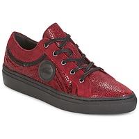 Παπούτσια Γυναίκα Χαμηλά Sneakers Pataugas YORK Red