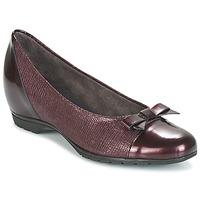 Παπούτσια Γυναίκα Μπαλαρίνες Pitillos 3614 BORDEAUX