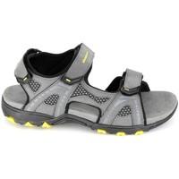 Παπούτσια Άνδρας Σανδάλια / Πέδιλα Elementerre Calcha Gris Jaune Grey