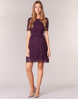 Υφασμάτινα Γυναίκα Κοντά Φορέματα Morgan ROUJEL Bordeaux