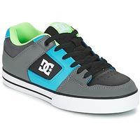 Παπούτσια Άνδρας Skate Παπούτσια DC Shoes PURE Grey / Green / μπλέ