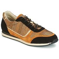 Παπούτσια Γυναίκα Χαμηλά Sneakers Bocage LAURETTE Black / Ocre