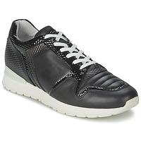 Παπούτσια Γυναίκα Χαμηλά Sneakers Bikkembergs KATE 420 Black