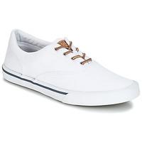 Παπούτσια Άνδρας Χαμηλά Sneakers Sperry Top-Sider STRIPER II CVO WASHED Άσπρο