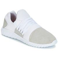Παπούτσια Άνδρας Χαμηλά Sneakers Asfvlt AREA LUX Άσπρο / Grey