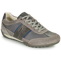 Παπούτσια Άνδρας Χαμηλά Sneakers Geox U WELLS C Grey