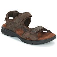 Παπούτσια Άνδρας Σανδάλια / Πέδιλα Panama Jack SALTON Brown