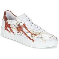 Παπούτσια Γυναίκα Χαμηλά Sneakers Felmini CRASKY Άσπρο / Red
