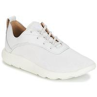 Παπούτσια Άνδρας Χαμηλά Sneakers Timberland FLYROAM Άσπρο