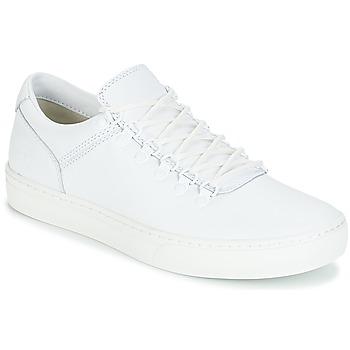 Παπούτσια Άνδρας Μπότες Timberland ADVENTURE2.0 CUPSOLE Άσπρο
