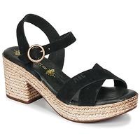 Παπούτσια Γυναίκα Σανδάλια / Πέδιλα Musse & Cloud LARISE Black