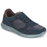Παπούτσια Άνδρας Χαμηλά Sneakers Geox U DAMIAN Μπλέ