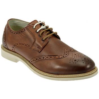 Παπούτσια Άνδρας Derby Lumberjack