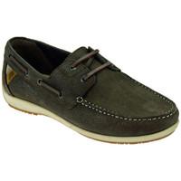Παπούτσια Άνδρας Boat shoes Lumberjack  Multicolour