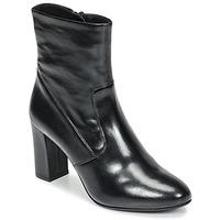 Παπούτσια Γυναίκα Μποτίνια Steve Madden AVENUE Black