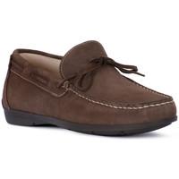 Παπούτσια Άνδρας Μοκασσίνια IgI&CO SCAMOSCIATO TORTORA Beige