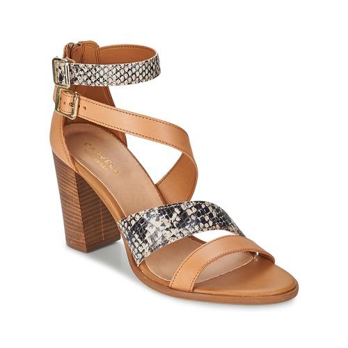 Παπούτσια Γυναίκα Σανδάλια / Πέδιλα Carvela KISSY Brown
