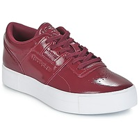 Παπούτσια Γυναίκα Χαμηλά Sneakers Reebok Classic WORKOUT LO FVS Bordeaux