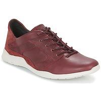 Παπούτσια Γυναίκα Χαμηλά Sneakers TBS JARDINS Brown