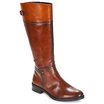 Παπούτσια Γυναίκα Μπότες για την πόλη Dorking TIERRA Brown