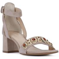 Παπούτσια Γυναίκα Σανδάλια / Πέδιλα Elvio Zanon SANDALO Rosa