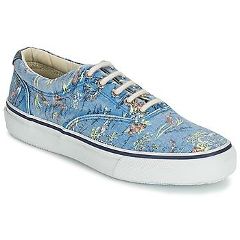 Παπούτσια Άνδρας Χαμηλά Sneakers Sperry Top-Sider STRIPER HAWAIIAN μπλέ