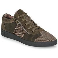 Παπούτσια Γυναίκα Χαμηλά Sneakers Mam'Zelle BADRIA Brown