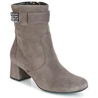 Παπούτσια Γυναίκα Μποτίνια Ara GESPIRINO Grey
