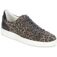 Παπούτσια Γυναίκα Χαμηλά Sneakers Yurban JUKKY Black