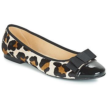 Παπούτσια Γυναίκα Μπαλαρίνες Betty London JOSSECA Multi