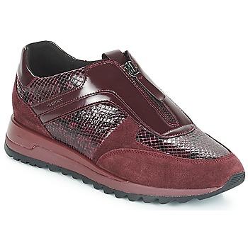 Παπούτσια Γυναίκα Χαμηλά Sneakers Geox D TABELYA Bordeaux