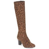 Παπούτσια Γυναίκα Μπότες για την πόλη André GANTELET 4 Leopard