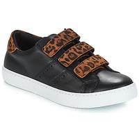 Παπούτσια Γυναίκα Χαμηλά Sneakers André PADDLE Leopard
