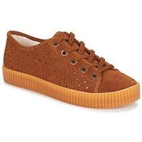 Παπούτσια Γυναίκα Χαμηλά Sneakers André STARLIGHT Brown